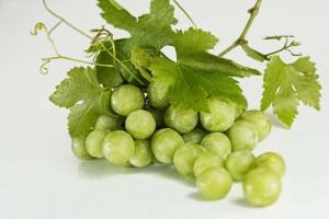 肠结核可以吃葡萄吗解析肠结核的病因