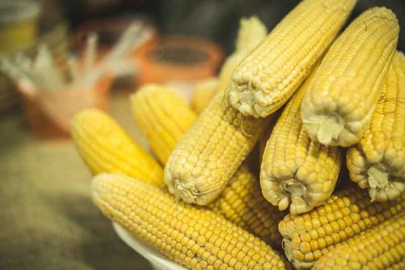 急性肾炎玉米可以吃的吗急性肾炎的原因是什么呢